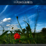 iPhone4 壁紙