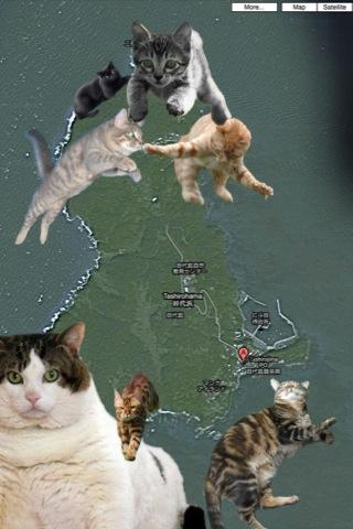 田代島 猫の島
