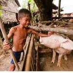 カンボジアの人々の生活を撮った写真 (59)