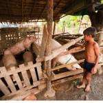 カンボジアの人々の生活を撮った写真 (54)