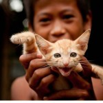 カンボジアの人々の生活を撮った写真 (46)
