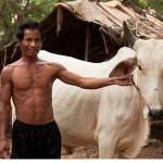 カンボジアの人々の生活を撮った写真 (43)