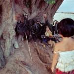 カンボジアの人々の生活を撮った写真 (15)