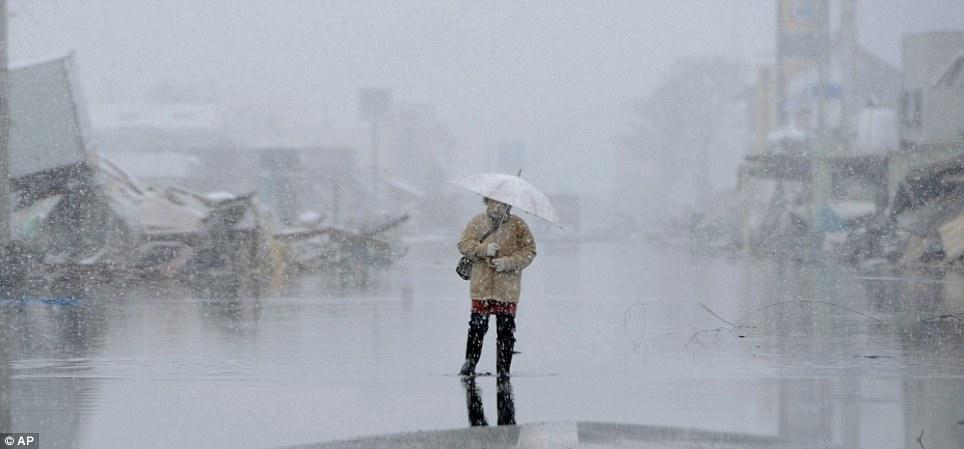 東北関東大震災、被災地の被害、復興 (36)