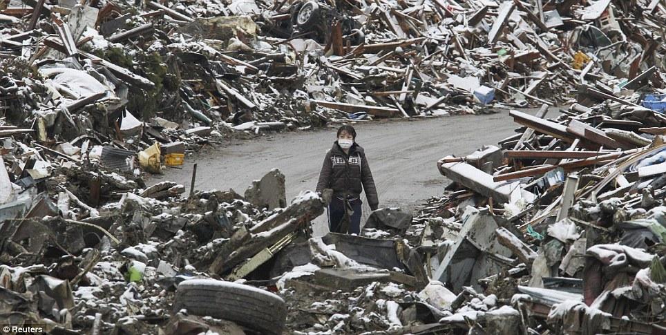 東北関東大震災、被災地の被害、復興 (13)