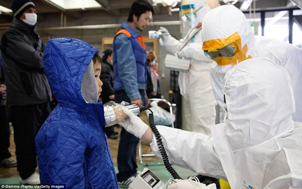 東北関東大震災、被災地の被害、復興 (18)