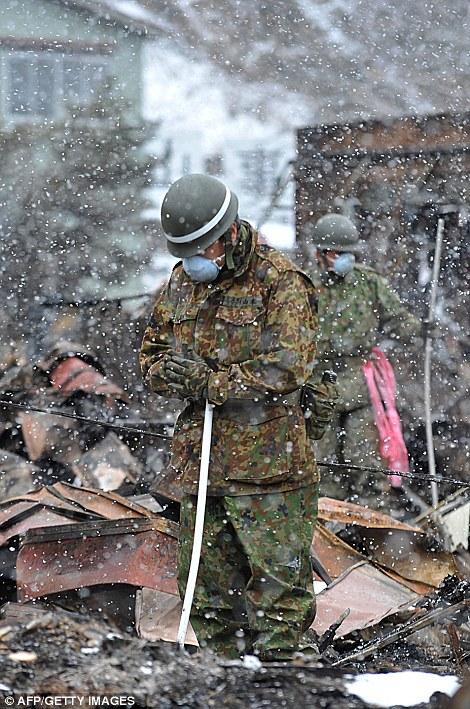 東北関東大震災、被災地の被害、復興 (20)