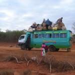 アフリカの日常?の写真 (18)