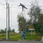 安全対策ゼロの危険過ぎる現場作業 (5)