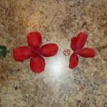 バラの花を、食べられる花に (13)