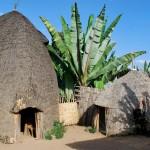 アフリカ エチオピアの写真 (22)