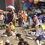 アフリカ エチオピアの写真 (15)