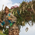 アフリカ エチオピアの写真 (36)