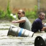 大洪水の時に守るべきはビール! (26)