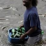 大洪水の時に守るべきはビール! (24)