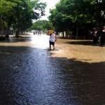 大洪水の時に守るべきはビール! (17)