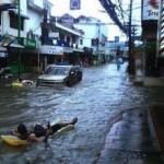 大洪水の時に守るべきはビール! (11)