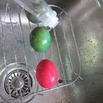 ゆで卵に模様をつけて楽しむ (4)