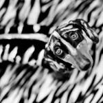 ダックスフンドのコスプレ写真 (9)