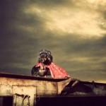 ダックスフンドのコスプレ写真 (8)