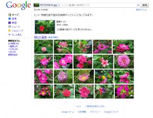 Google 画像検索 / Google images が凄い