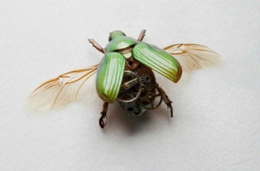 昆虫の中身は歯車