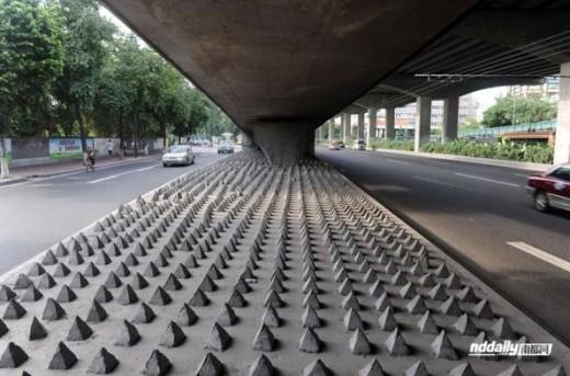 中国のホームレス防止スパイク