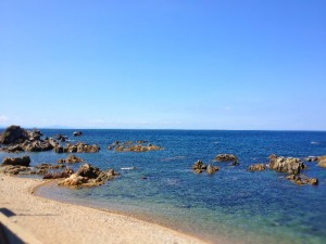 夏の海 8月末