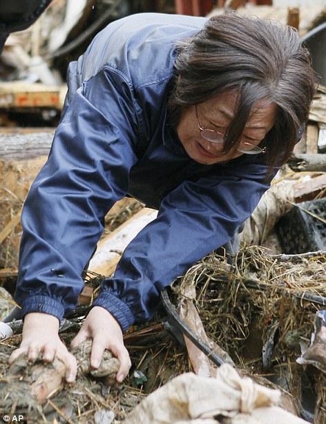 東北関東大震災、被災地の被害、復興 (12)