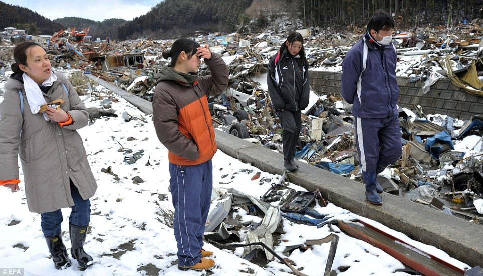東北関東大震災、被災地の被害、復興 (23)