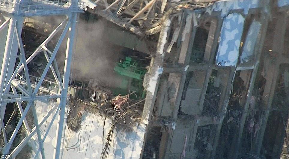 東北関東大震災、被災地の被害、復興 (3)