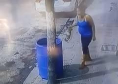 犬をゴミ箱に捨てる酷い女