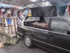 セルビア人がBMWを豚の丸焼き車両に改造