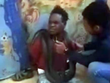 犯人の首に蛇を巻いて尋問する極悪警察官